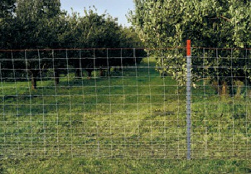 """Galvanized Sheep /& Goat Fencing 180807 Red Brand 48/""""H x 100/'L 4/"""" x 4/"""" Mesh"""