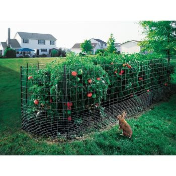 2x4 welded wire fence. Delighful Wire With 2x4 Welded Wire Fence X