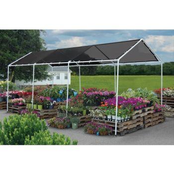 Plants, Shrubs & Trees - Garden Center - Lawn, Garden & Patio - All ...