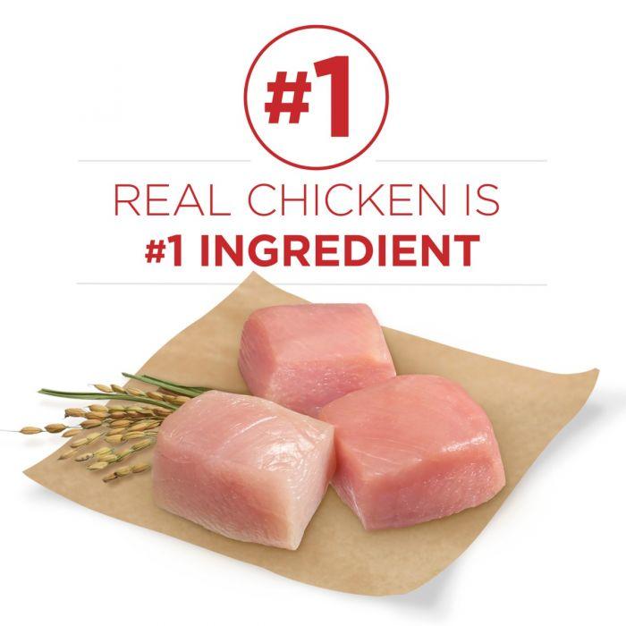Purina One Smartblend Natural Chicken Rice Formula Adult Dry Dog Food 31 1 Lbs Bag 17800149396