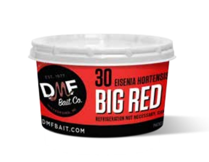 DMF Bait Co Big Red Worms Fishing Bait 25 Count 30RW30