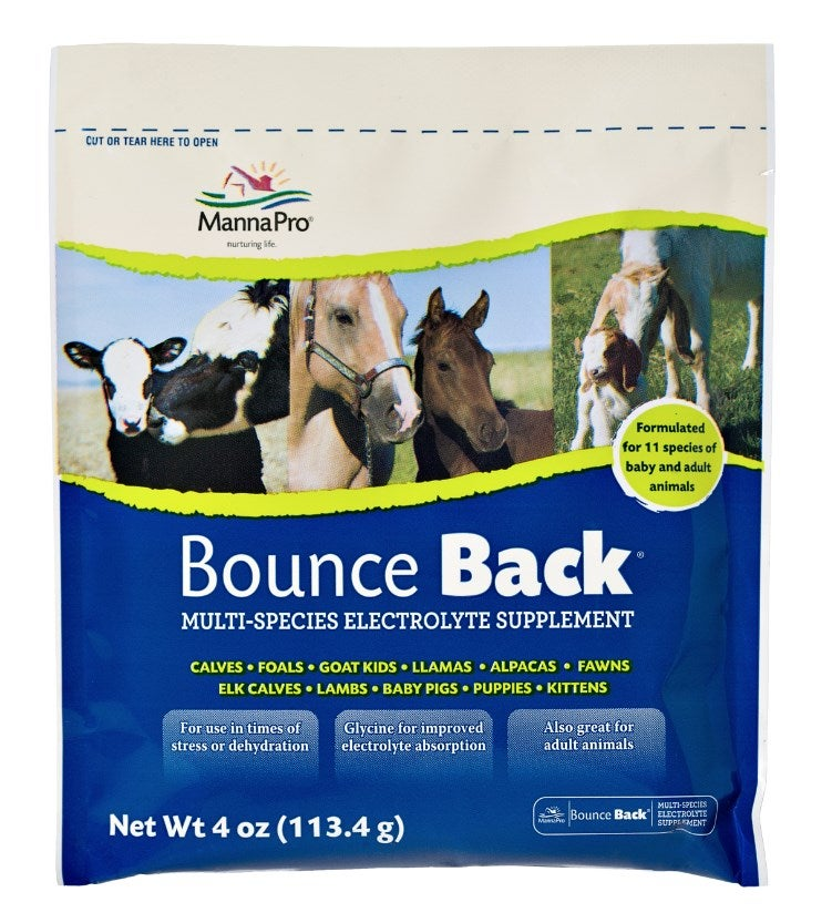 Manna Pro Bounce Back Multi-Species Electrolyte Supplement 00-9413-0249